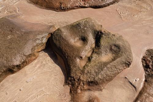 Ακτές Κίμπερλι (Διάπλους Ακτών): Ίχνη από δεινόσαυρους στην παραλία James Point, στις ακτές Κίμπερλι. Αυστραλία.