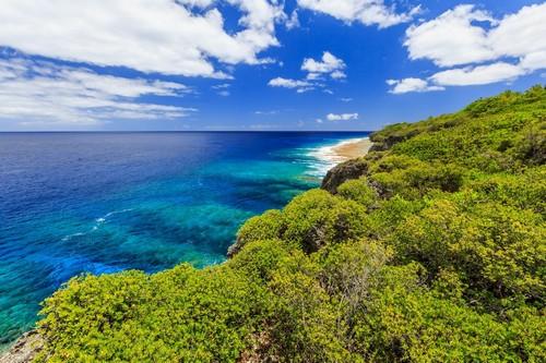 Αλόφι: Ύφαλοι Hikutavake στο Αλόφι. Νησί Νιούε.