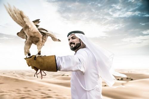 Άμπου Ντάμπι: Άραβας άντρας με παραδοσιακά ρούχα του εμιράτου περπατώντας στην έρημο με το γεράκι του. Άμπου Ντάμπι. Ηνωμένα Αραβικά Εμιράτα.
