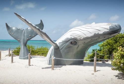 Γκραντ Τερκς: Εντυπωσιακό ομοίωμα φάλαινας στην παραλία Γκραντ Τερκς. Καραϊβική.