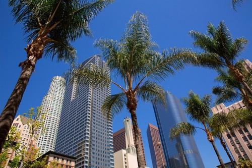 Λος Άντζελες (Καλιφόρνια): Φοίνικες και Ουρανοξύστες στη δεύτερη μεγαλύτερη πόλη της Αμερικής. Λος Άντζελες, Καλιφόρνια. ΗΠΑ.