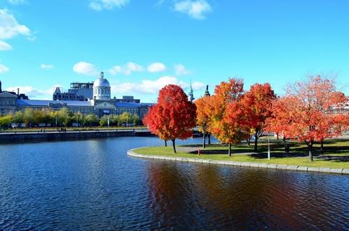 Μόντρεαλ: Φθινοπωρινό Μόντρεαλ. Καναδάς.