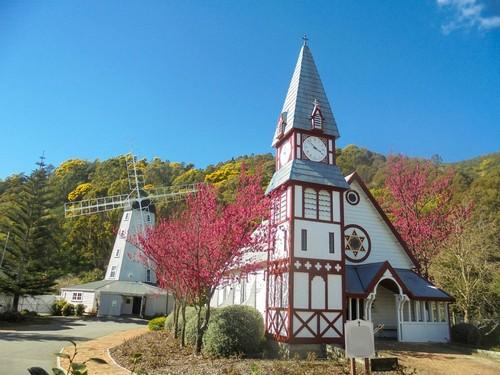 Νέλσον: Όμορφη ιστορική ξύλινη εκκλησία δίπλα στο ανθισμένο δέντρο στο Founders Heritage Park. Νέλσον. Νέα Ζηλανδία.