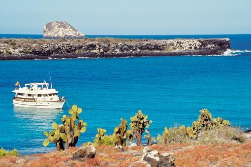 Νήσος Πρίκι Πέαρ: Ακατοίκητο νησί 'φραγκόσυκο' στα Βρεττανικά Παρθένα Νησιά στην Καραϊβική. Νήσος Πρίκι Πέαρ.