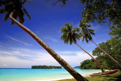 Σάντο Εσπιρίτο: Καταγάλανα νερά, Φοίνικες και κανό στην παραλία. Σάντο Εσπιρίτο. Βραζιλία.