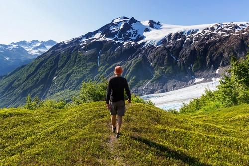 Εξερεύνηση Παγετώνων - Από Σιούαρντ Προς Βανκούβερ (19HAL4a) - Σιούαρντ (Αλάσκα)