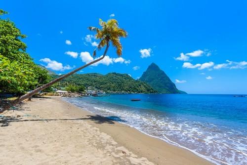 Σουφριέρ: Καταγάλανα νερά δίπλα στα δέντρα και στο βάθος η μικρή πόλη της Σουφριέρ. Καραϊβική. Σάντα Λουτσία.