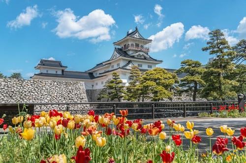 Τογιάμα: Κιτρινοκόκκινο ανοιξιάτικο σκηνικό του κάστρου της Τογιάμα. Ιαπωνία.