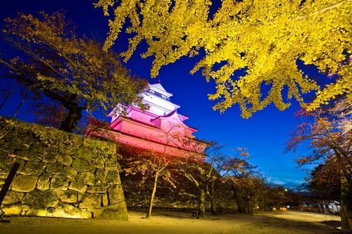 Τσουρούγκα : Πανέμορφο και φωταγωγημένο το κάστρο της Τσουρούγκα. Ιαπωνία.