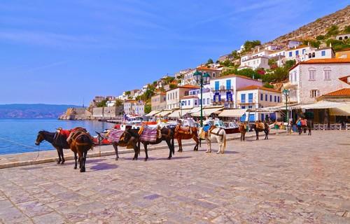 Ύδρα: Με τα γαϊδουράκια, το μεταφορικό μέσον της Ύδρας. Ελλάδα.